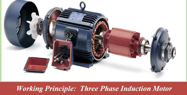 How does a 3 phase induction motor work industrial for Three phase induction motor