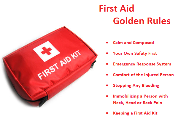 importance of first aid knowledge It is beyond doubt that knowledge of first aid promotes a safer and healthier  of  all the staff members and students, it is important to have first aid in the schools.