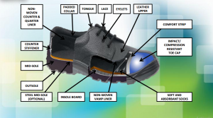 Anatomy of Safety Shoes